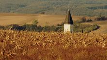 corn temple