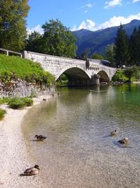 Lake Bohinj, Slovenia 3