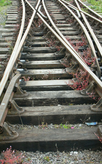 Crossing Rails
