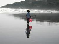 walk by the beach 2