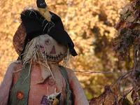 Fall Scarecrow
