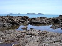 NZ Landscape 5