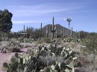Windvane in the Desert