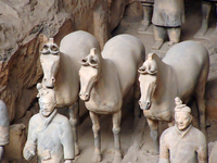 Qin's Terra Cotta Army