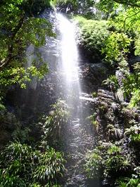 Hinterland Falls