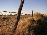 Dry Fence, Blue Sky
