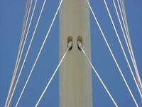 Calatrava-Harp 3