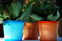 Three flower pots