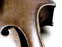 my violine