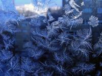 freeze 3