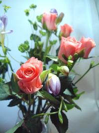 Rosebuds and Freesia 3