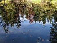 Water-Mirror