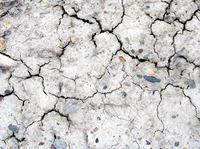Dry Dirt