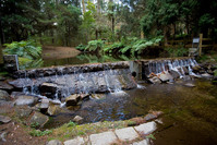 Donnely's Weir