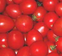 Fruit & Veg 2