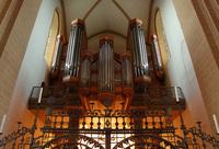 Organ in a dome