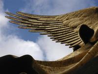 Tiergarten angel