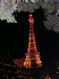 Paris- evening