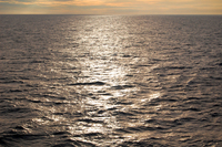 Alaska sea and sun 2