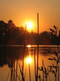 Dipping Sun