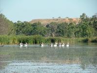 South Australian Landscapes