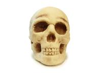 Halloween Skull 3