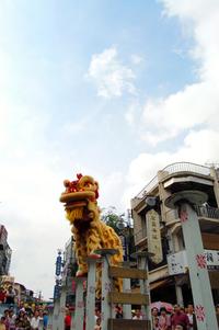 Lion tradition