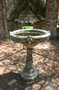 Mystical Fountain