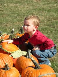 Boy with Pumpkins_01