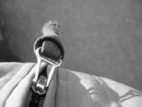 a zipper II