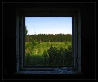 Obraz zobrazujúci lúku a les - okno vo forme obrazu - vnútorný obraz zobrazujúci vonakjší svet - ako navonok, tak aj vnútri