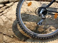 Bike's rear wheel