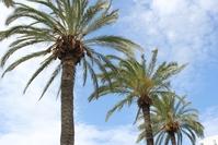 Ibiza / Eivissa 2