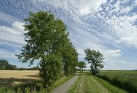 Nearby Ezinge, the Netherlands 1