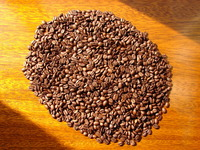 coffee grains 2