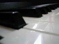 Macro Piano Keys