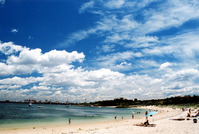 Sydney beach scene