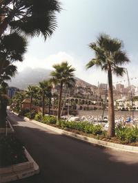 Monte Carlo bay 2