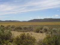Karoo landscapes 3
