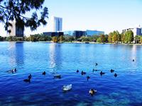 Eola Park , Orlando