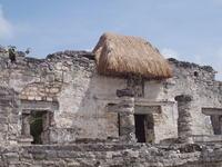 Maya Runes