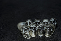 Skull Photo Files