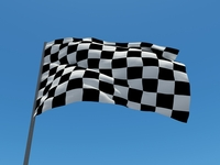 3D - flag winner