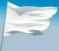 3D clean flag