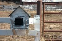 Old farm house mail box