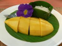 Mango Sticky Rice 1