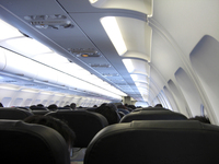 Rear view of passengers in an airplane