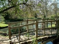 Exbury Gardens, Pond