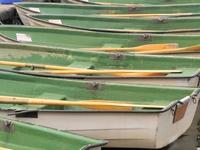 Rowboats 1