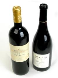 Wine Bottles 01